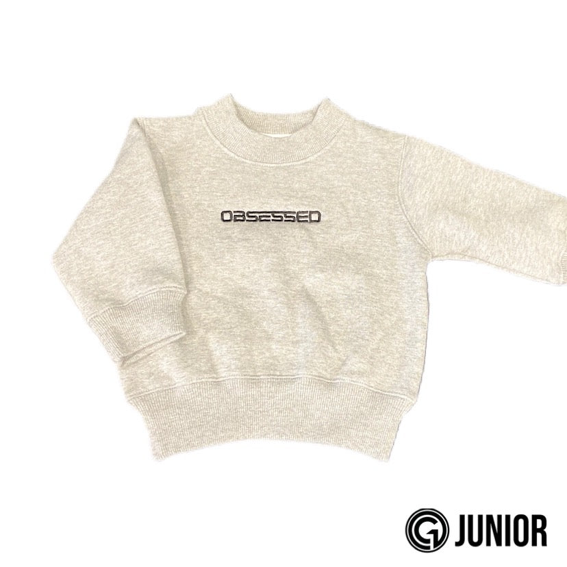 OBSESSED JUNIOR SWEATER - Grey