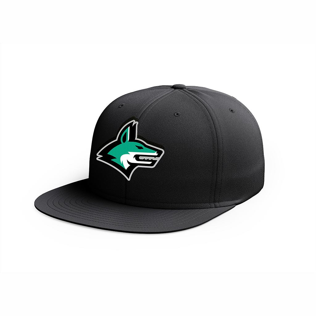 Dallas Jackals Black Snapback Cap