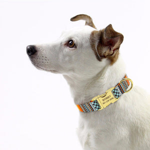 Fashion Personalized Dog Collar
