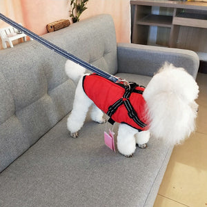 Winter Dog Harness Jacket