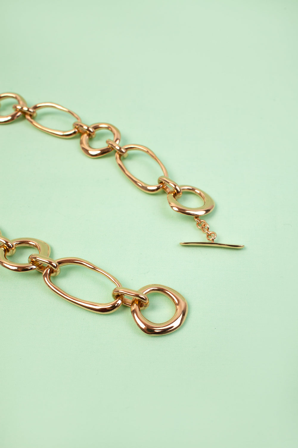 Circle Oval Link Necklace