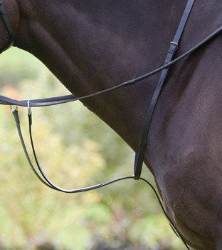 Blenheim Running Martingale
