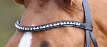 Aviemore Large Diamante Browband in Black