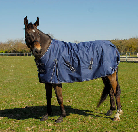 Rhinegold Arizona 100g Turnout Rug
