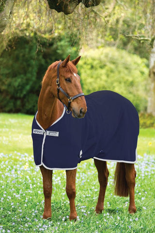 Amigo Jersey Cooler on Horse