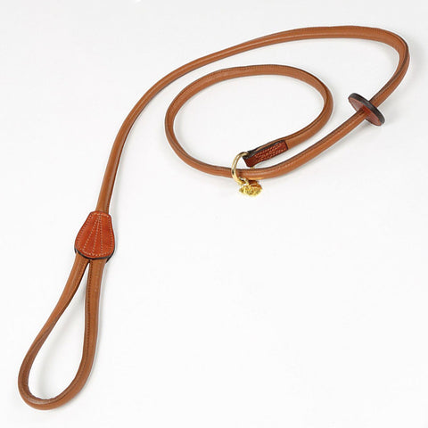 Rolled Leather Slip Dog Lead
