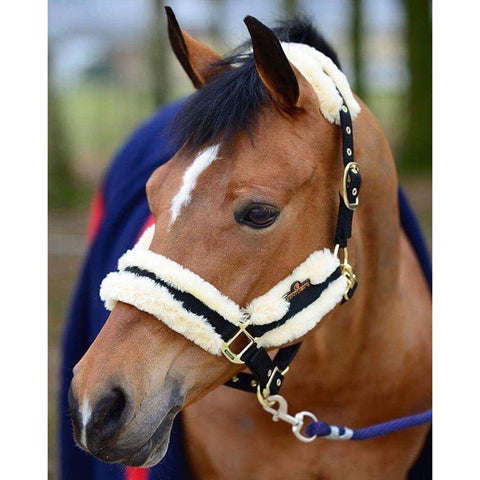Kentucky Nylon Sheepskin Headcollar