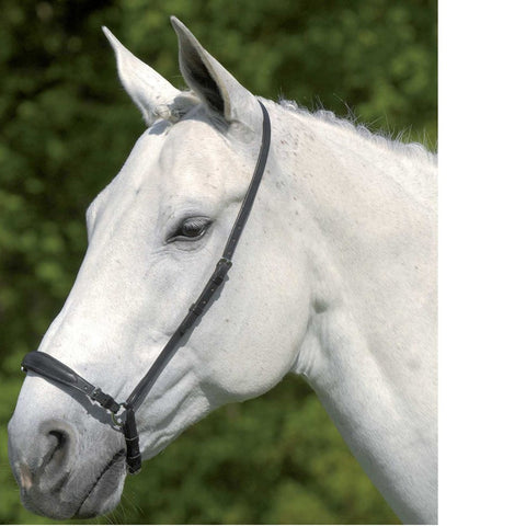 Drop Noseband with double buckle adjustment on nose.