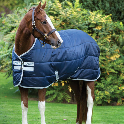 Amigo Insulator Medium Stable Rug
