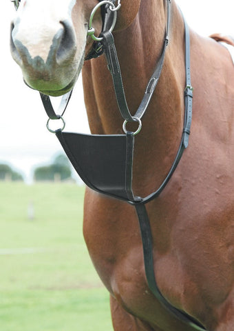 Blenheim Bib Martingale
