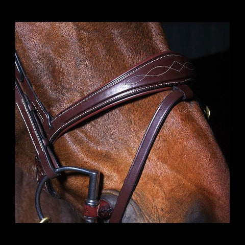 Dy'on Raised Anatomic Noseband