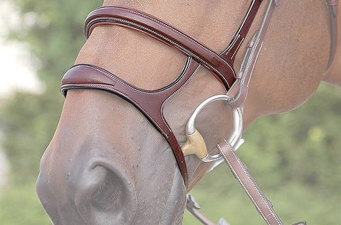 Double Nose Band Front