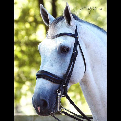 Dyon Dressage Double Bridle