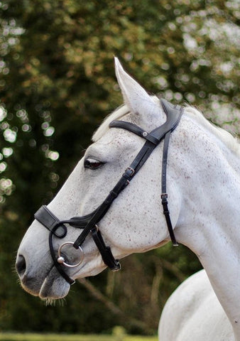 Eco Rider Freedom Jump Bridle