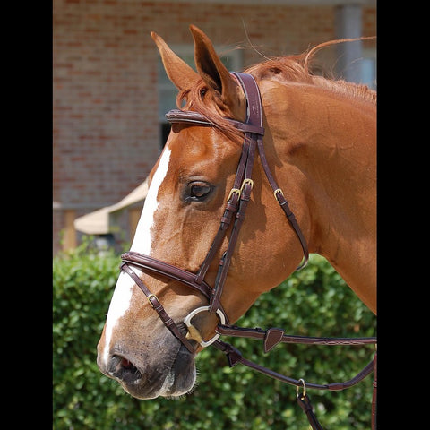 Dy'on Fancy Stitch Bridle With Flash Nose Band