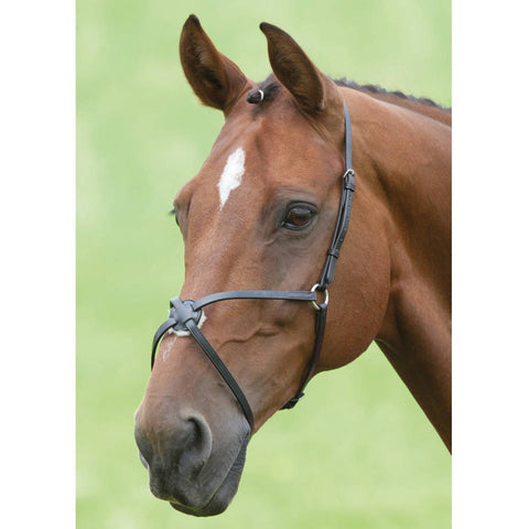 Blenheim Grackle Noseband