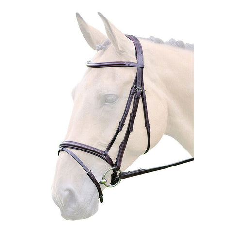 Lavello Flash Bridle