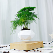 Load image into Gallery viewer, Levitating Air Bonsai Pot Rotation Flower Pot Planters Magnetic  Suspension Floating Pot Potted Plant Home Desk Decor
