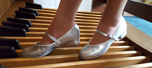 Silver Organ Shoes