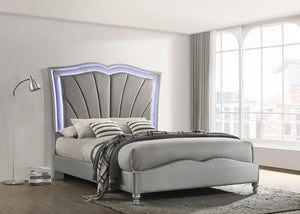 Grey Velvet - Bowfield Queen Upholstered Bed With Led Lighting Grey