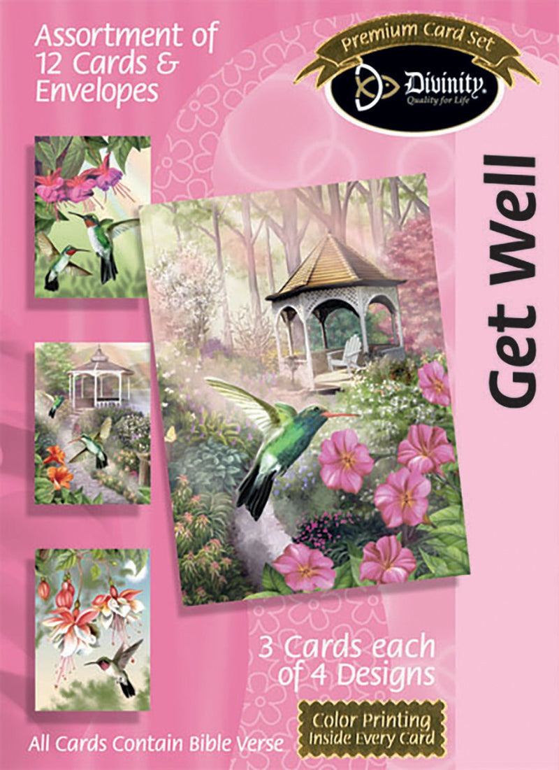 Divinity Boutique Boxed Cards: Get Well, Hummingbirds