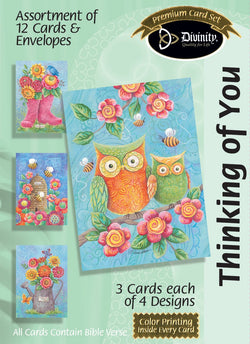 Divinity Boutique Boxed Cards: Thinking Of You, Owls & Boots