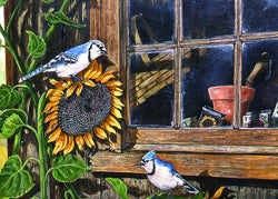Divinity Boutique Single Cards: Barn Windows Blue jays & Sunflowers (6 Pack)