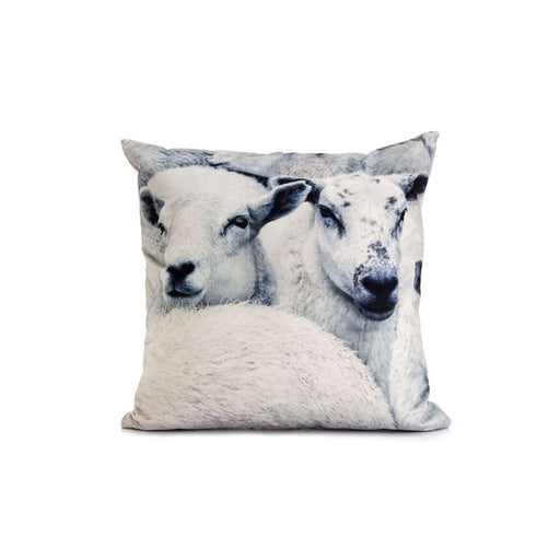 Ewes Scatter - Sofa Company