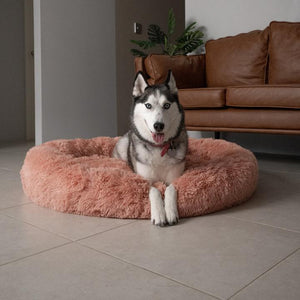 [Last Day Promotion, 50% Off] MALAMUTE ComfortBed™ | Therapeutic Dog Calming BedDog Bed Beige Pink / M - 60cm/23.5inch - Malamute Pet Shop