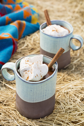 hot chocolate with marshmallows and cinnamon sticks in a mug