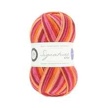 Load image into Gallery viewer, Signature 4 ply WYS Sock Yarn