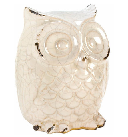 Distressed Owl