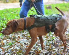 Load image into Gallery viewer, VOODOO TRACKING AND FIELD K9 HARNESS - Northstar Bags