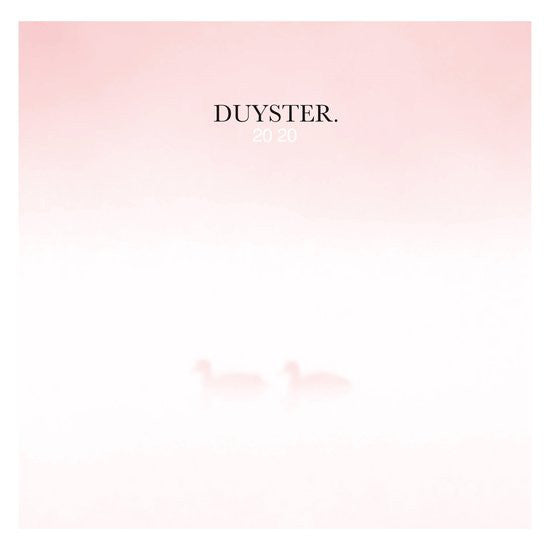 Various : Duyster.2020 (2xLP, Comp, Ltd, Pin)