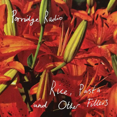 Porridge Radio : Rice, Pasta And Other Fillers (CD)