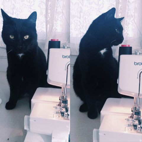 Split image of black cat sitting next to a sewing machine. On left, cat sits nicely; on right, cat is chewing on thread from the machine.