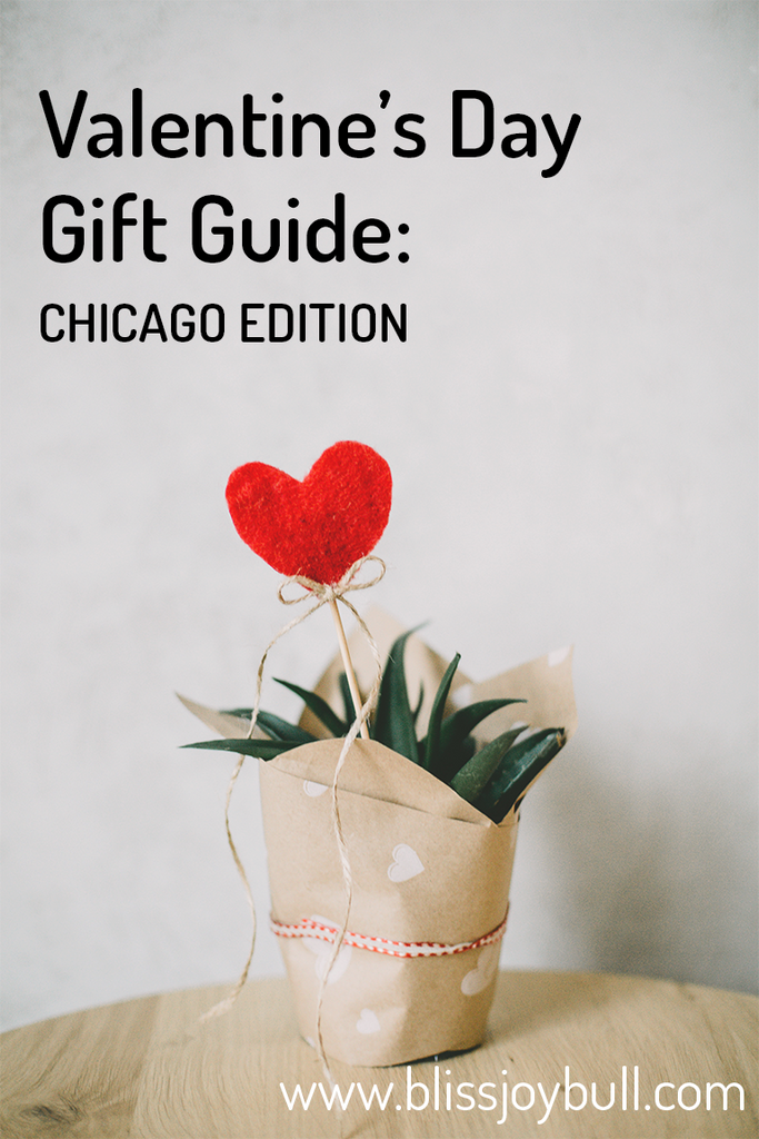 Text of Valentine's Day Gift Guide: Chicago Edition on image of spiky green plant, wrapped with kraft paper printed with small white hearts. A felt heart and ribbon bow attached to a wood stick, sticks out of the plant.