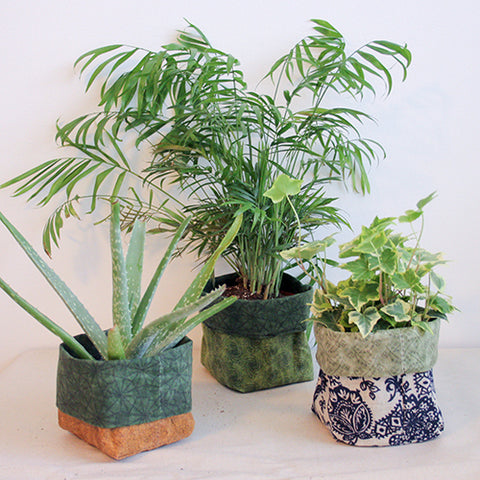 three plants peaking out of square fabric waxed canvas holders