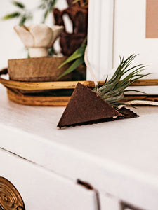 An air plant sits in a dark brown fabric cone holder. There is the corner of a picture frame and a wooden tray in the background. The air plant and holder sit on a white dresser.