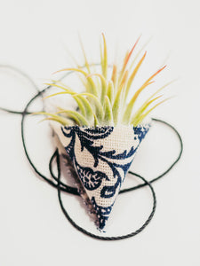 An air plant sits in a blue and white fabric cone fabric holder. A thin black cord sits underneath the holder.