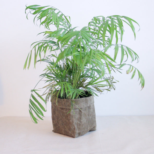 Waxed Canvas Plant Holder - Green Stripes