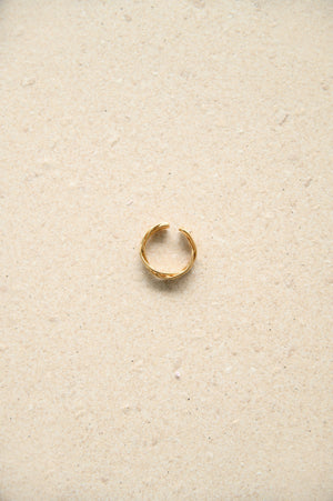 (Some Fine Love) Noa Ring