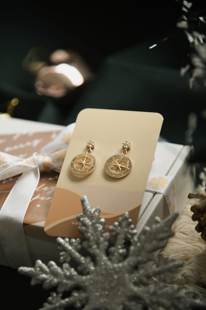 Load image into Gallery viewer, North Light Earrings (S925)