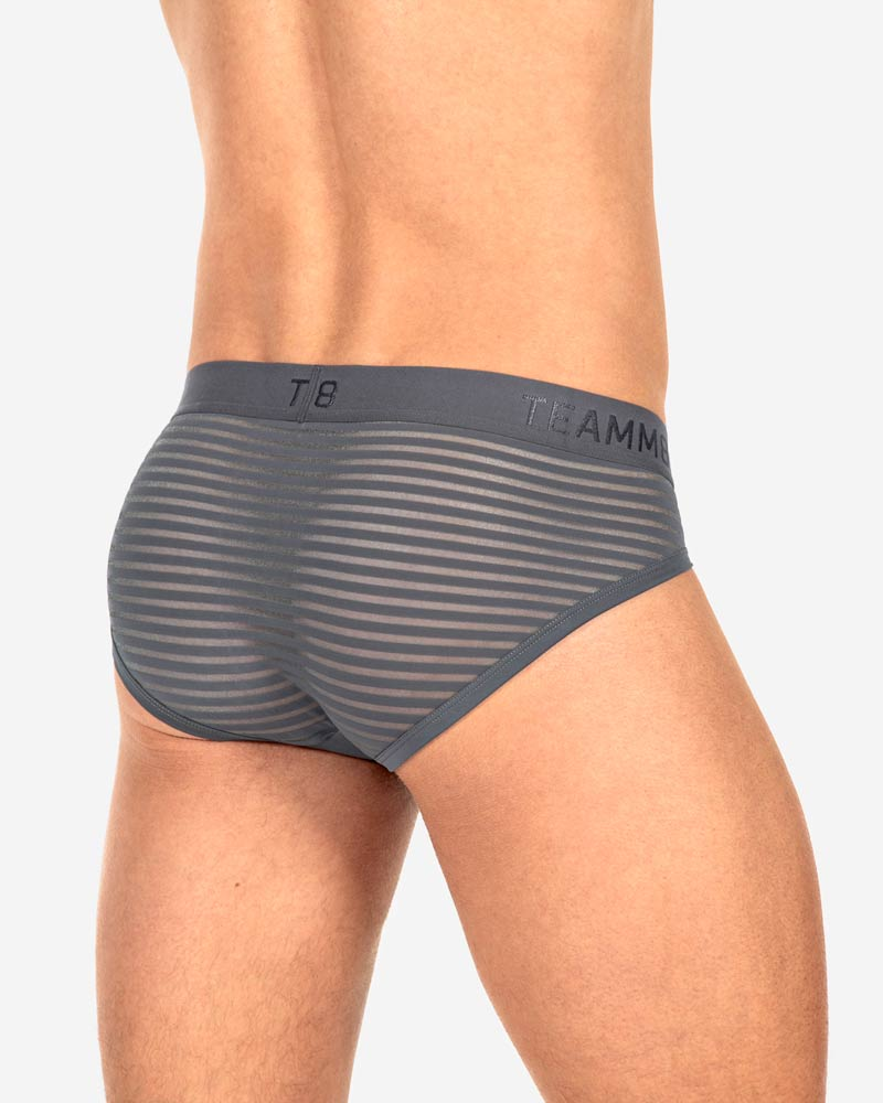 Gemini Sheer Brief – Gunmetal