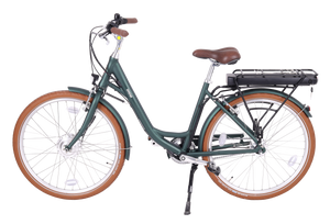 "Omega step through, low seat electric bike with 26"" wheels"