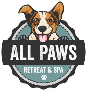 Welcome To All Paws Retreat