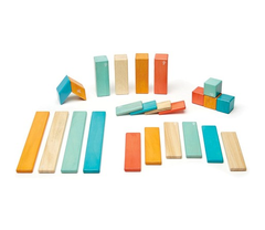 Tegu Magnetic Wooden Blocks - 24 Pieces