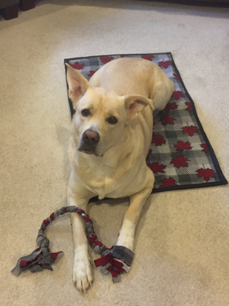 Pet Kennel Blanket - Small