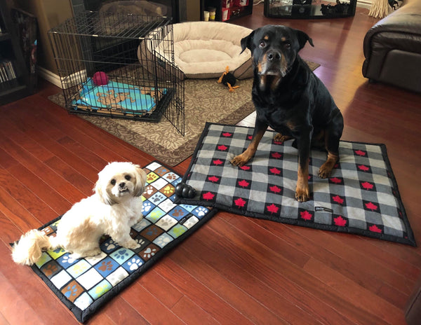 Pet Kennel Blanket - Large