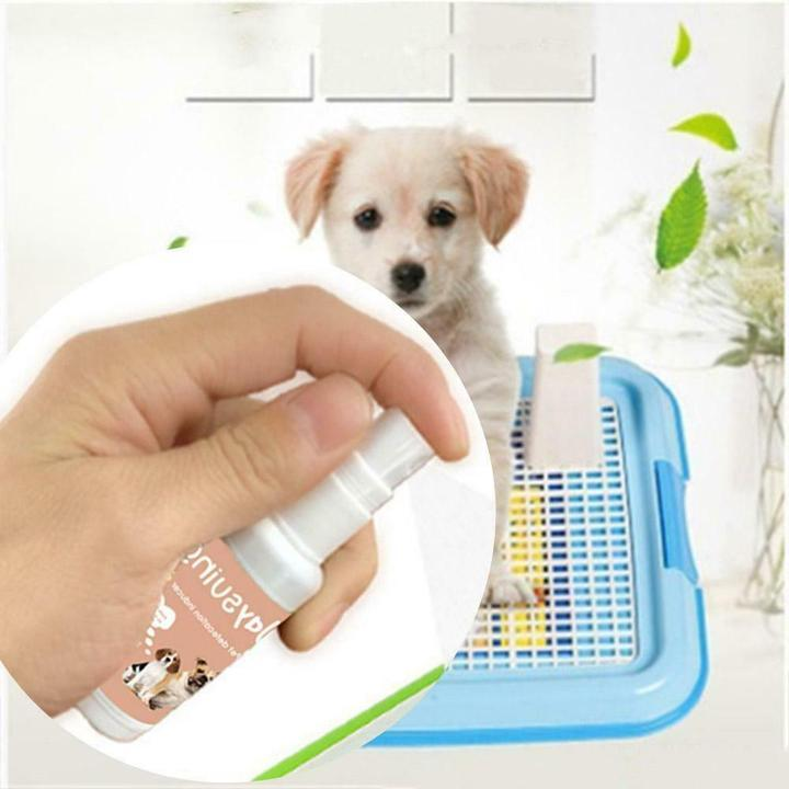 Pet Toilet Training Spray 200 ml